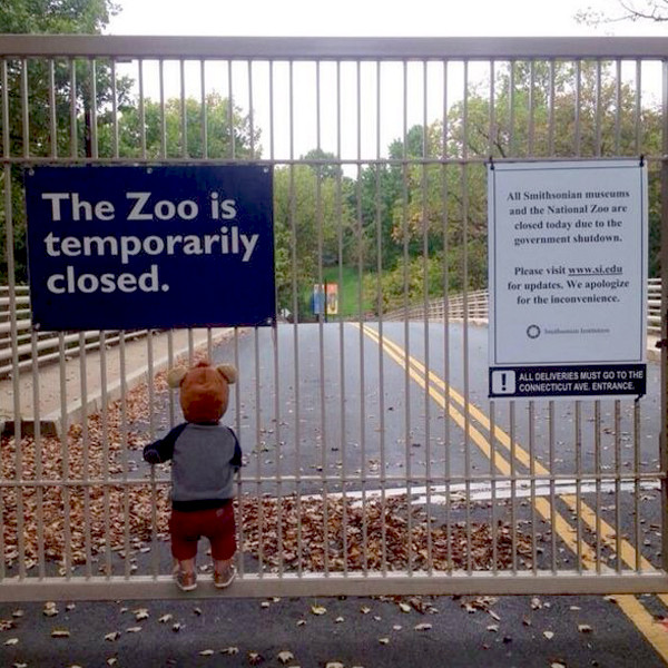 The Zoo Is Closed
