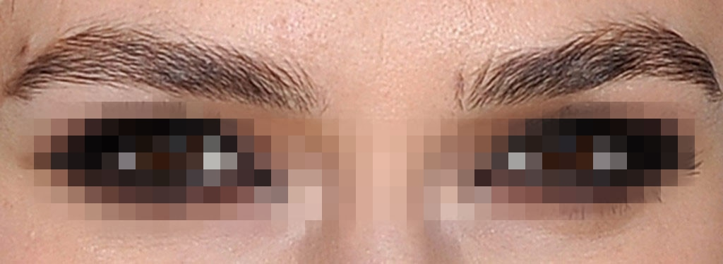 Guess the Celebrity Eyebrows