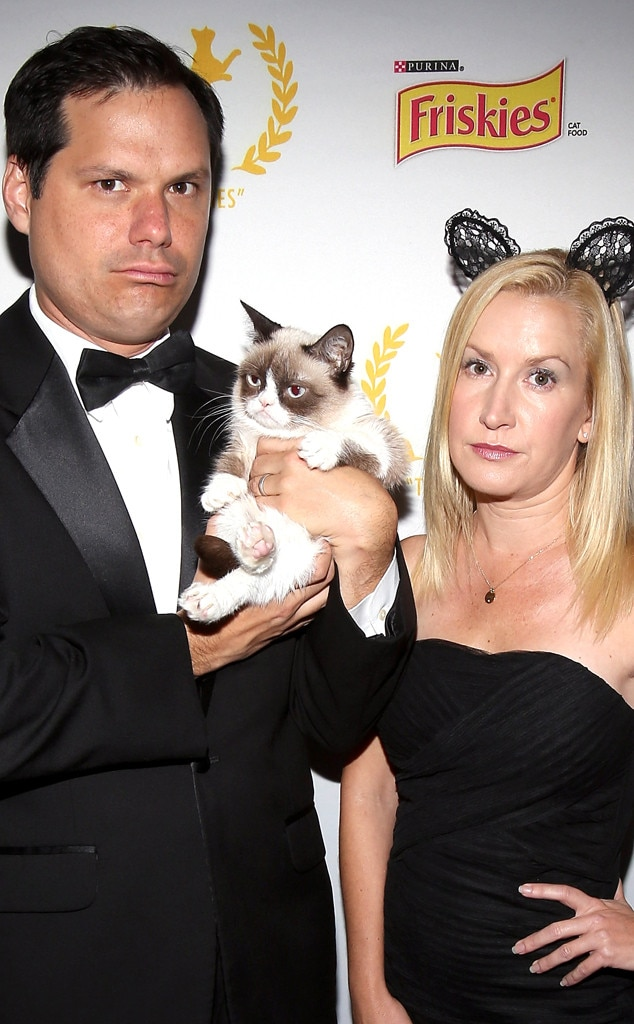 Michael Ian Black, Angela Kinsey, Grumpy Cat