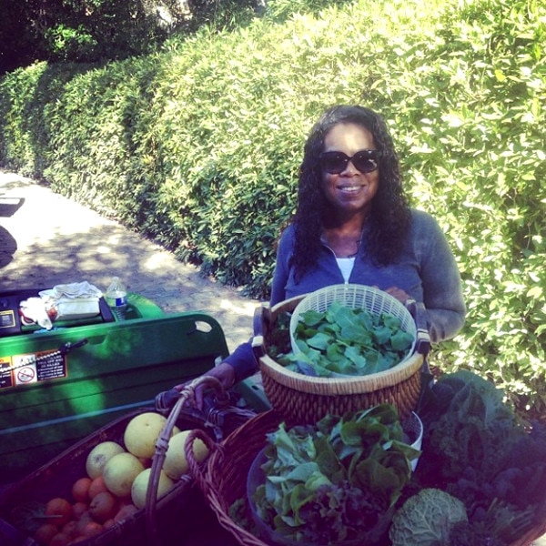 Oprah, Instagram