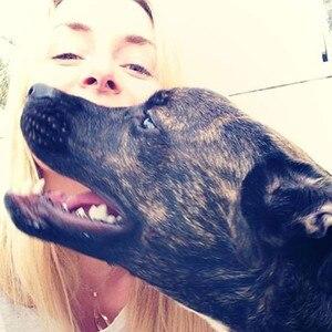 Lindsay Vonn, Puppy, Facebook