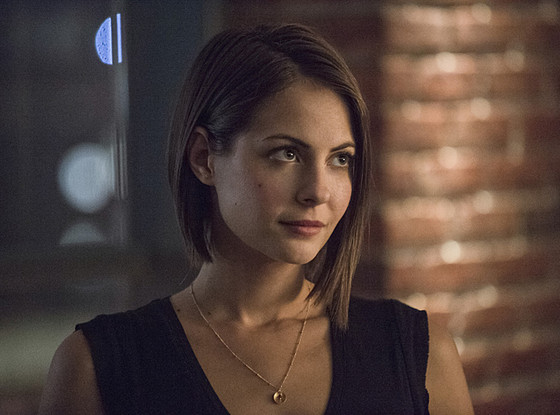 Willa Holland, Arrow