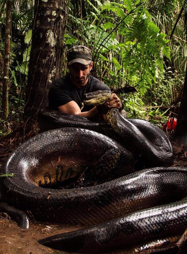 Paul Rosolie, Anaconda