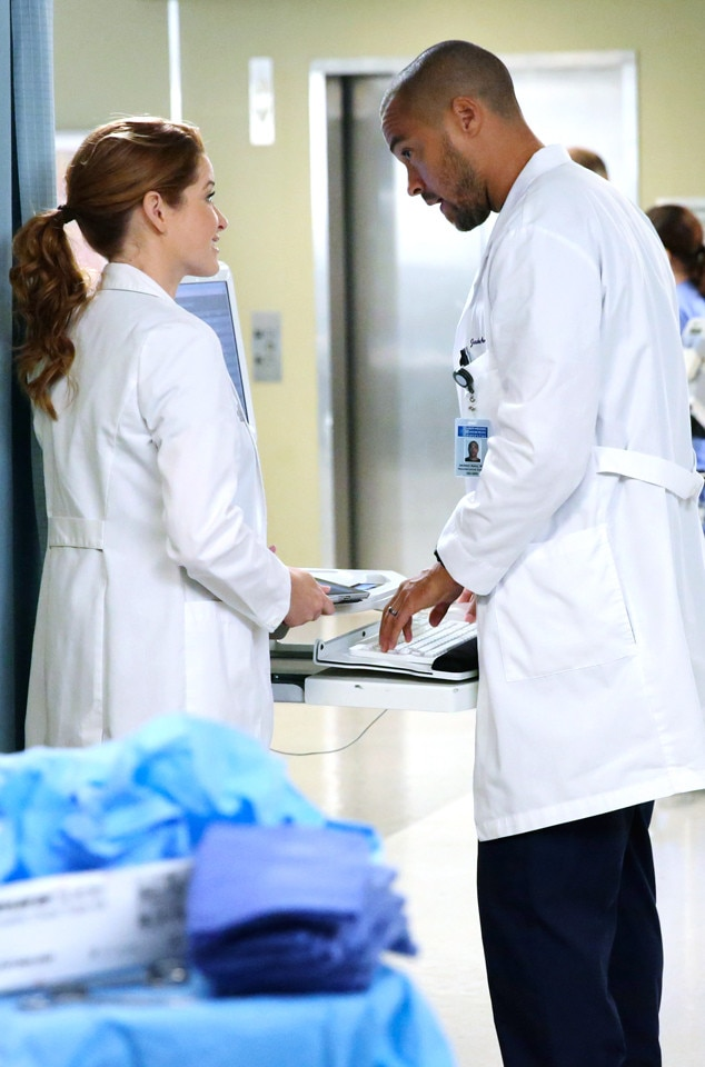 Grey's Anatomy, Sarah Drew, Jesse Williams