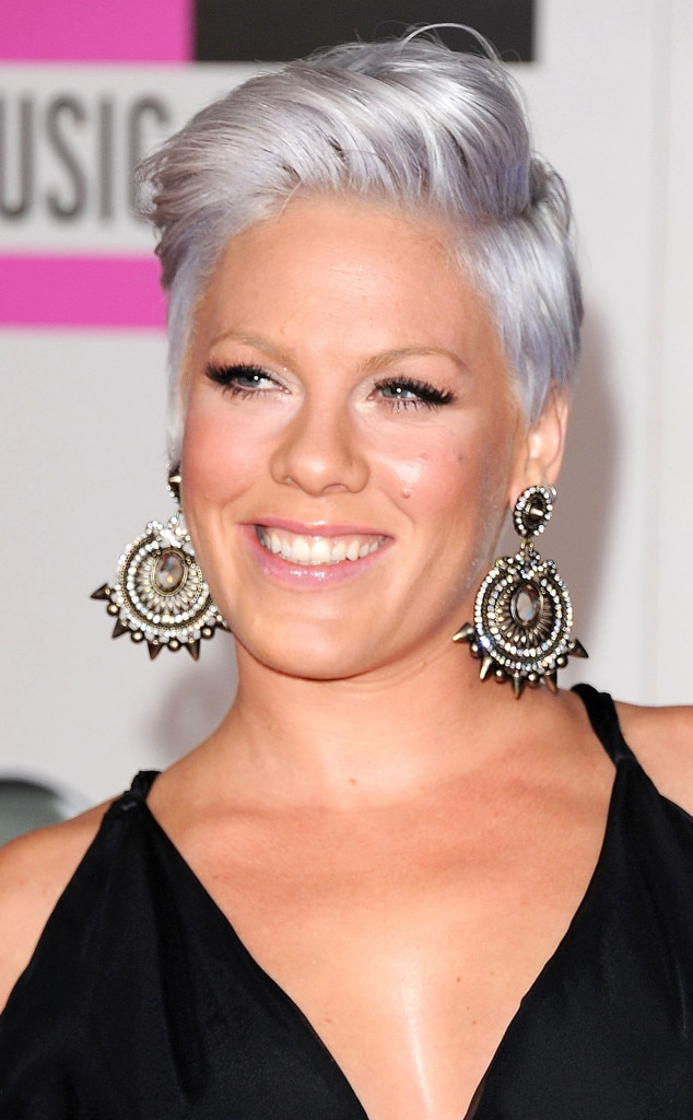 Pink from Stars Who Dyed Their Hair Gray | E! News