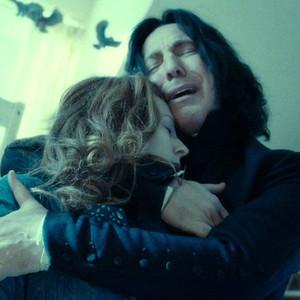 Harry Potter, Snape, Lily Potter