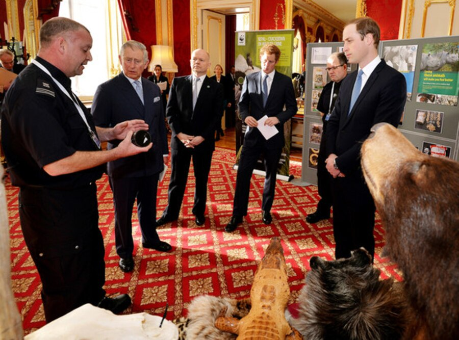 Prince Harry, Prince William, Duke of Cambridge, Prince Charles, Prince of Wales