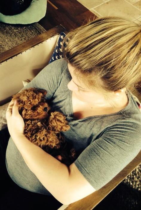 Kelly Clarkson, Wyatt, Puppy