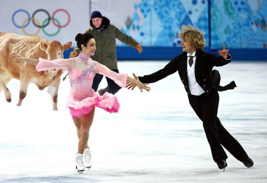 Meryl Davis, Charlie White, Olympics, Sochi, Robert Pattinson