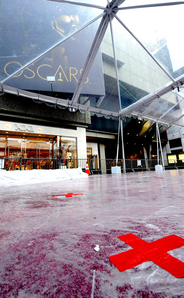 Oscars Red Carpet Rain Cover