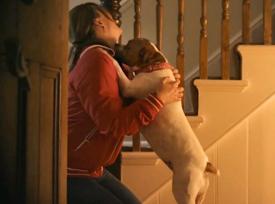 This Video Promoting Dog Adoptions Is Guaranteed To Make