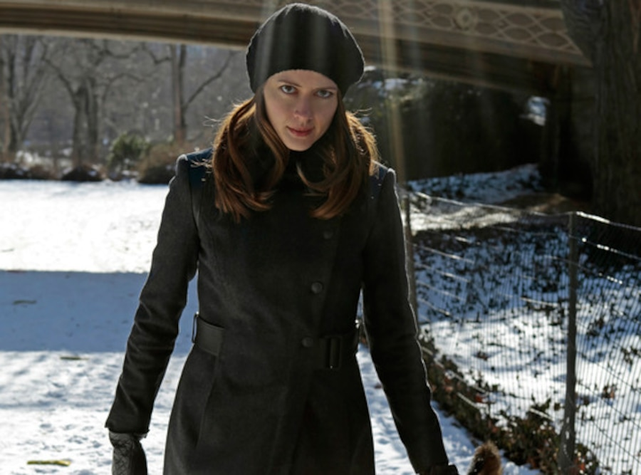 Amy Acker, Person of Interest