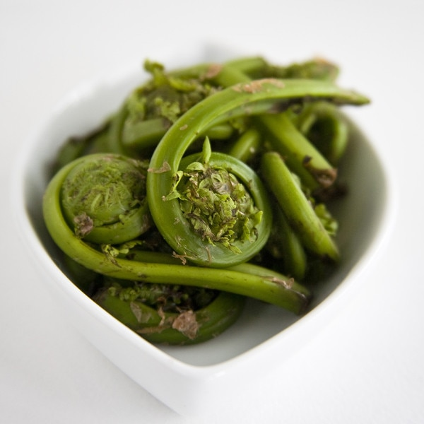 Spring Foods, Fiddlehead Ferns