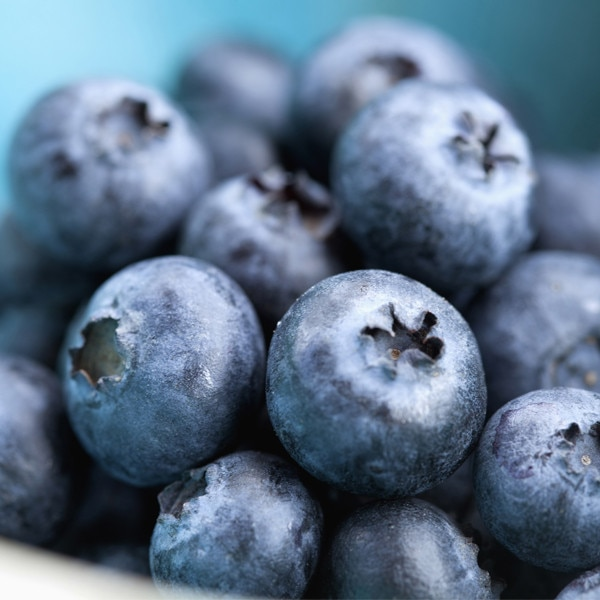 Spring Foods, Blueberries