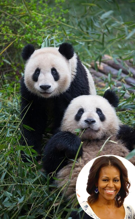 Michelle Obama, Chengdu Panda Base