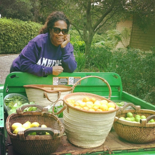 Lettuce And Lemons And Limes Oh My From Oprah 39 S