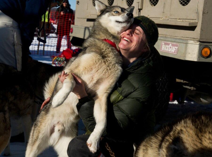 Iditarod Trail Sled Dog Race, Wolf Puppies