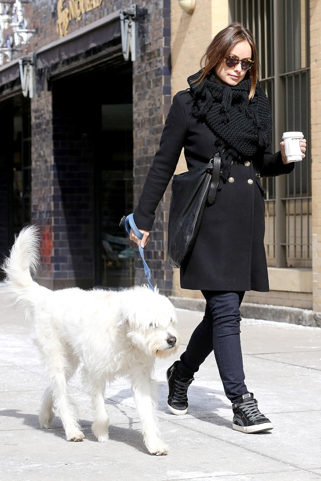 Olivia Wilde, Dog