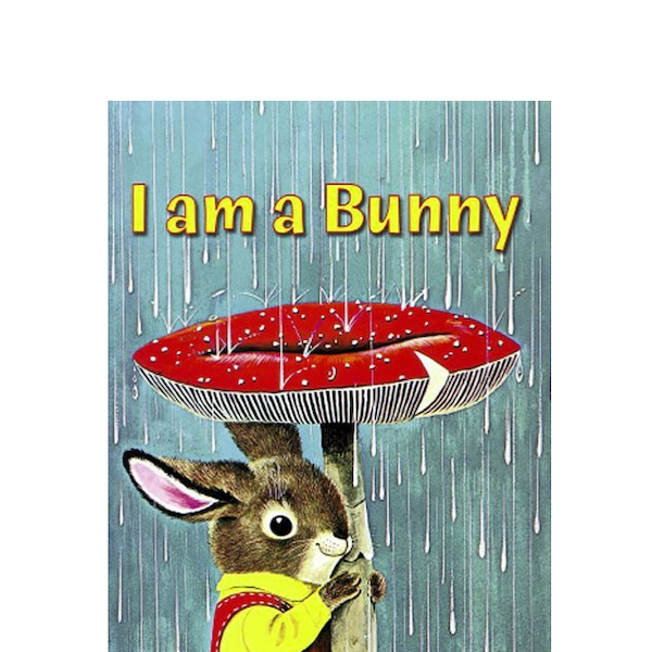 I Am A Bunny By Ole Risom From Alicia Silverstone S Fave