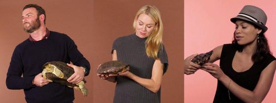 Liev Schreiber, Naomi Watts, Rosario Dawson, Turtles