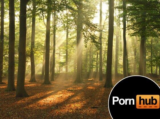PornHub Trees