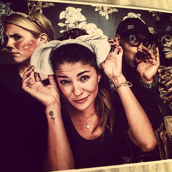 Dianna Agron, Twit Pic