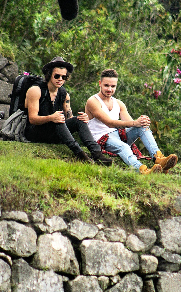 Harry Styles, Liam Payne
