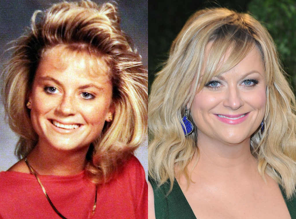 Amy Poehler, Geek to Chic