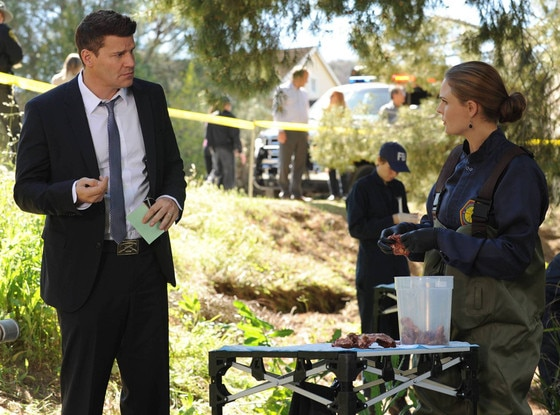 David Boreanaz, Emily Deschanel, Bones