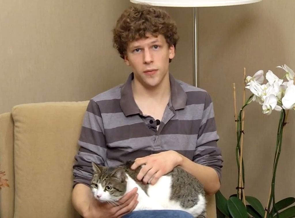 Celeb with Cats