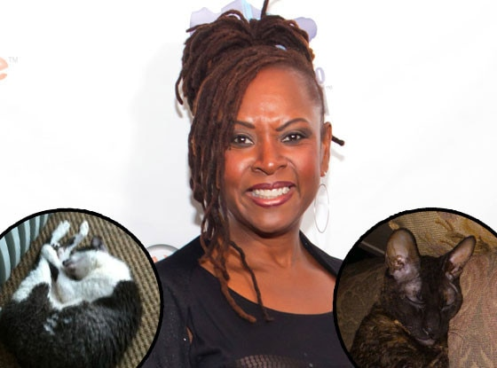 Robin Quivers, Cats, Brangelina, Jennifer Aniston