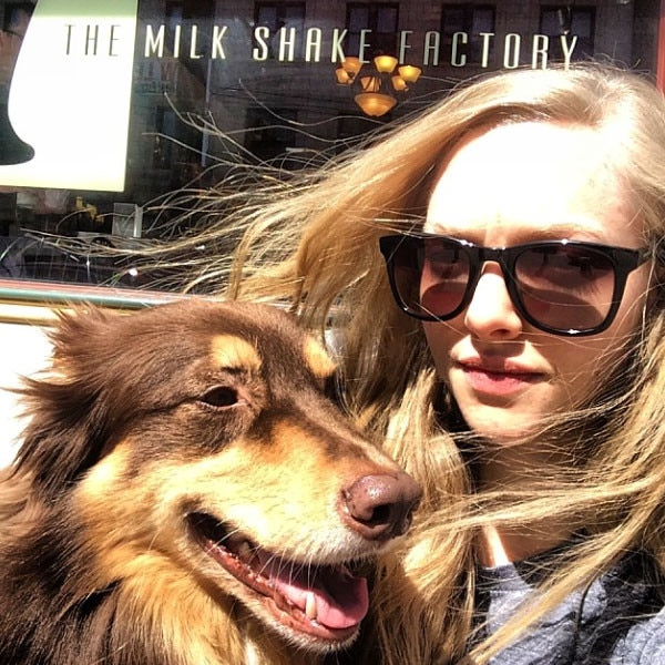 Amanda Seyfried, Dog, Finn