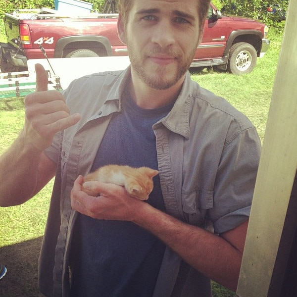 Celebs with Cats, Liam Hemsworth