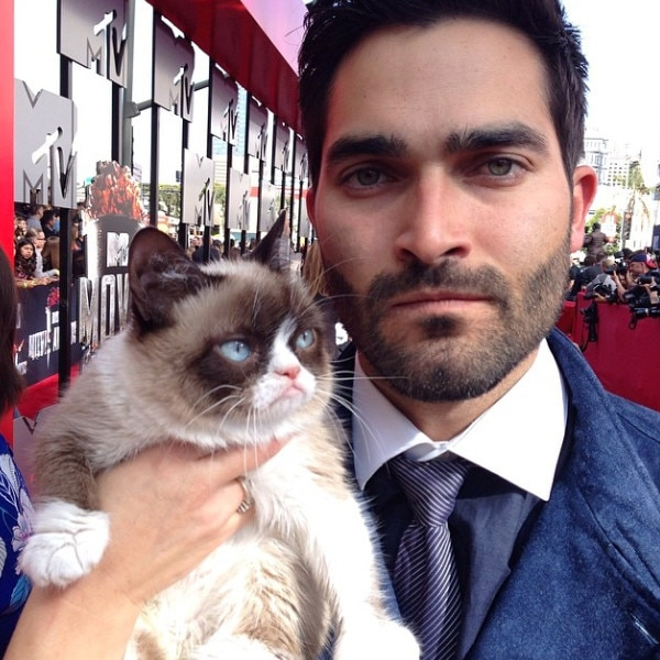 Celebs with Cats, Tyler Hoechlin