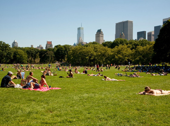 The Fabulist, Bucket List, Central Park