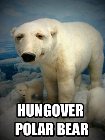 Hungover Polar Bear From Terrible Taxidermy With