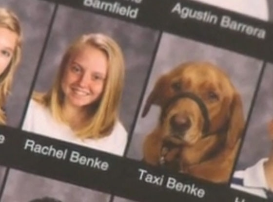 Yearbook Dog