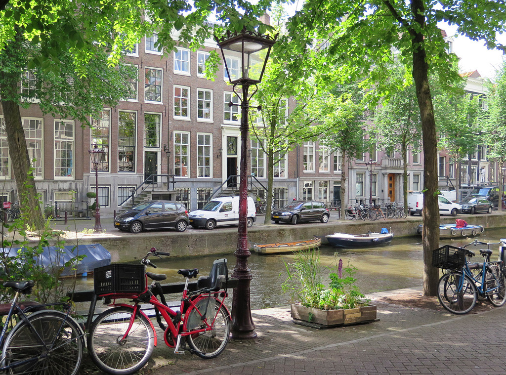 Amsterdam Bench, The Fault of Our Stars
