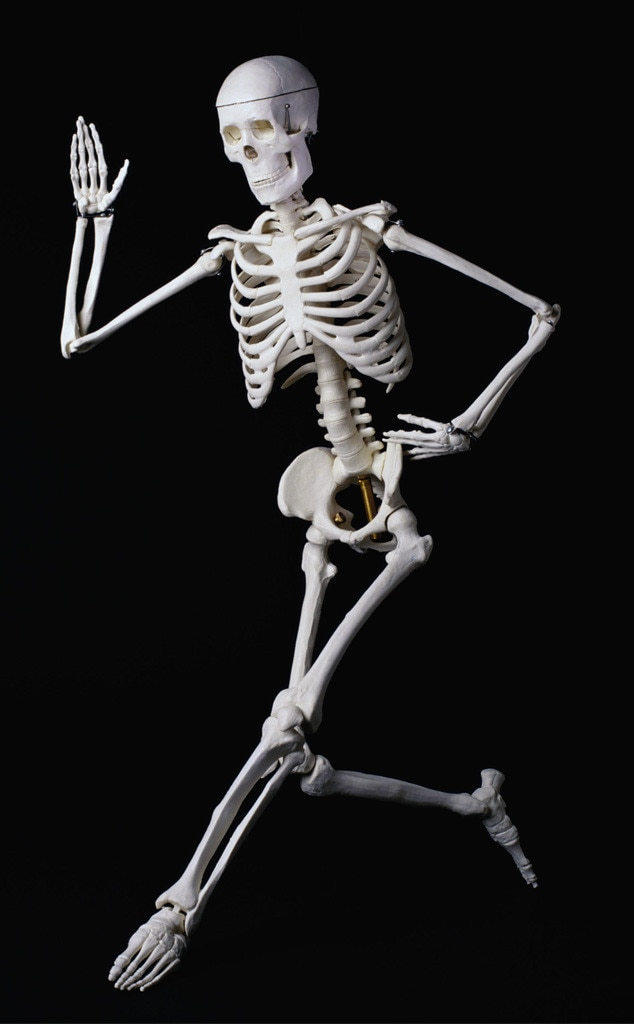 Body misconceptions, skeleton