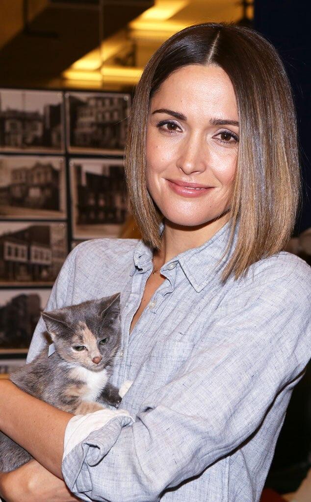 Rose Byrne, Kitten
