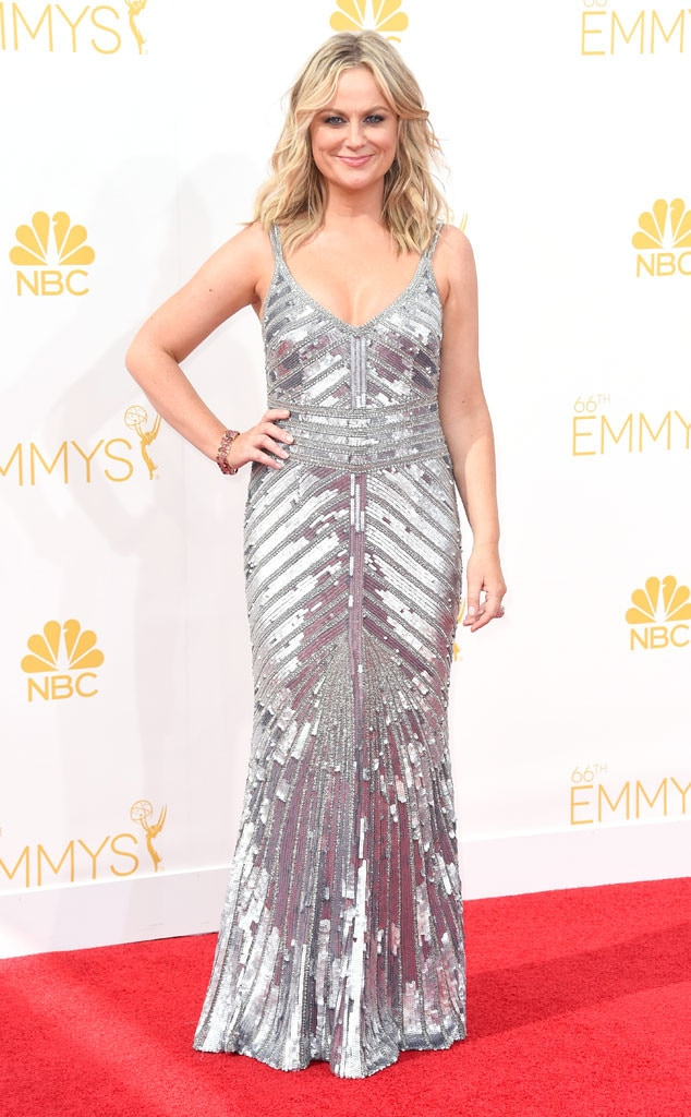Amy Poehler, Emmy Awards 2014