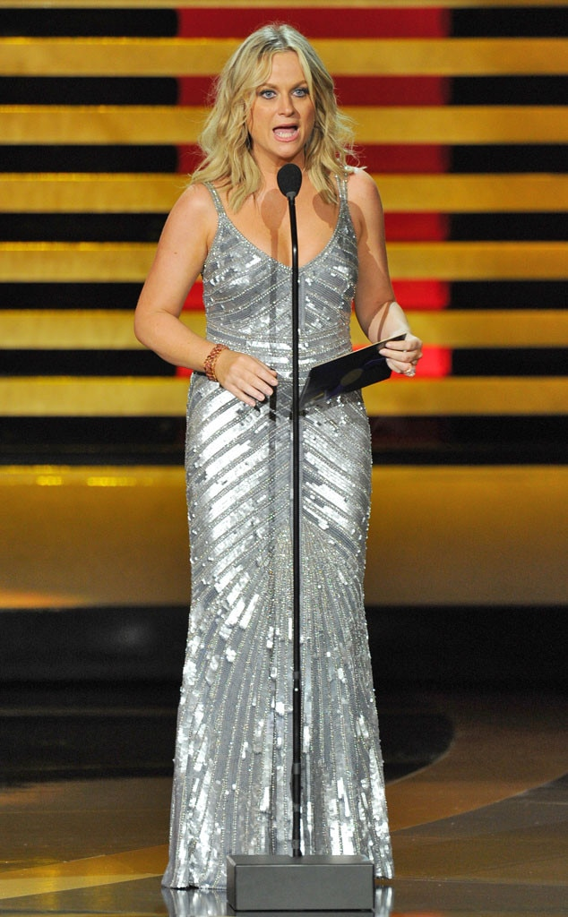 Amy Poehler, Emmy Awards 2014 Show