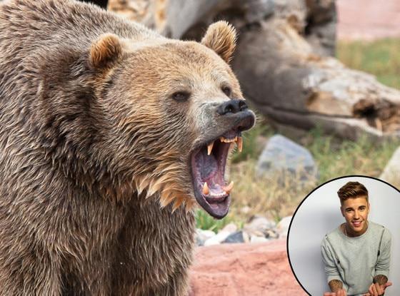 Justin Bieber, Bear