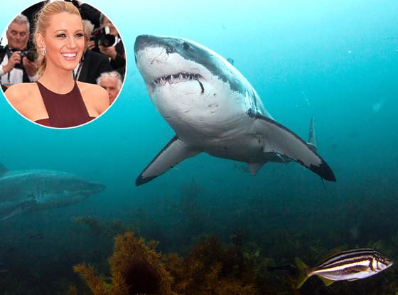 Blake Lively, Shark