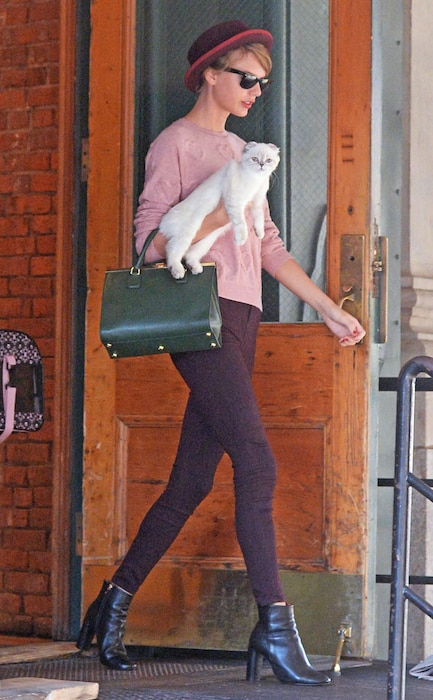 Taylor Swift, Olivia Benson