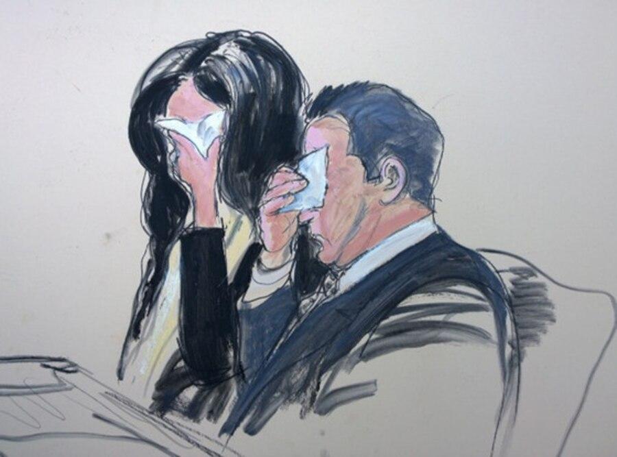 Teresa Giudice, Joe Giudice, Courtroom Sketch