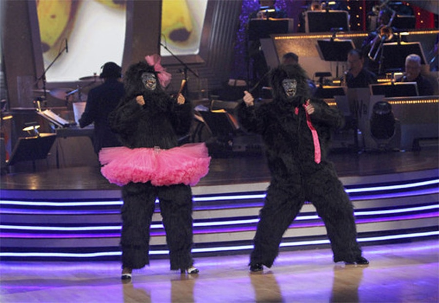 Bristol Palin, Gorilla, Dancing with the Stars