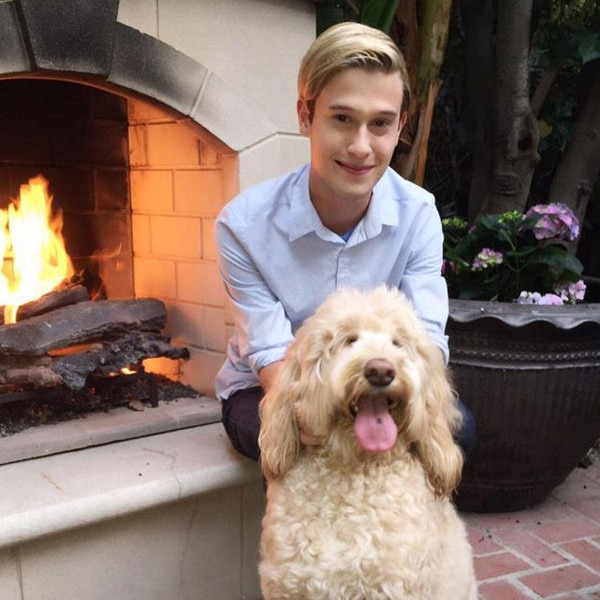 Tyler Henry, Hollywood Medium