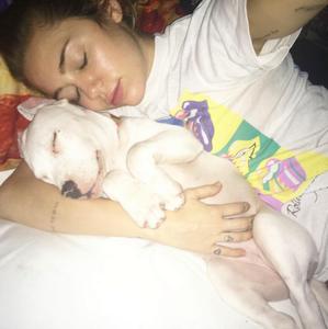 Miley Cyrus, Dog, Milky