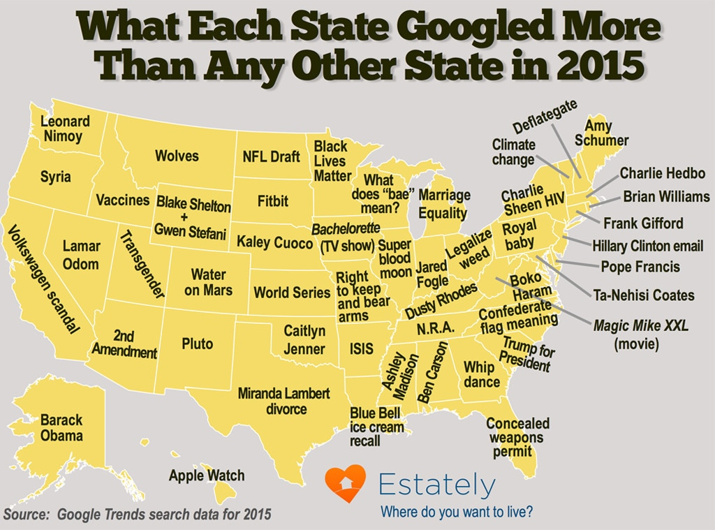 2015's Most Googled Terms by State